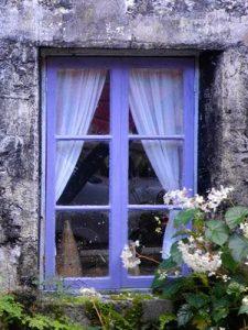 Golden Spring Purple Window   Graham Davis Paintings