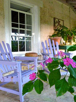 Golden Spring Purple Chairs   Graham Davis Paintings